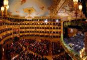 Hotel Mercurio - Teatro la Fenice